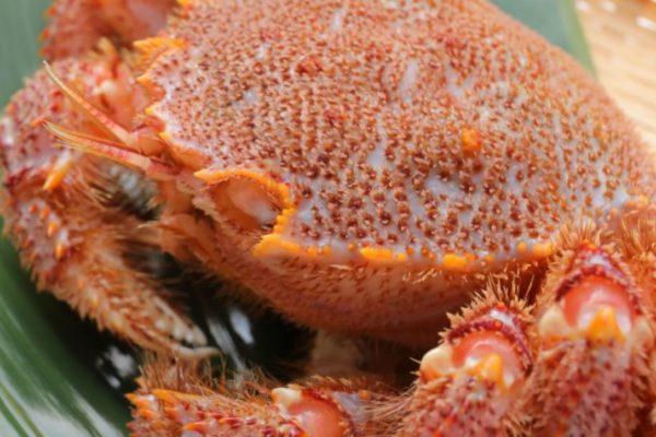 激安カニ通販 蟹工場の毛ガニ、ズワイガニそしてタラバガニの比較