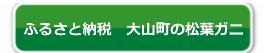 大山町 松葉ガニ